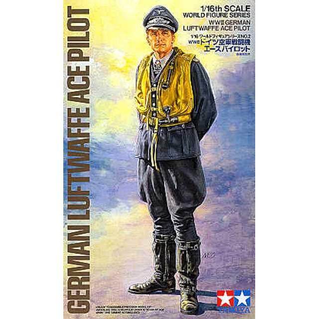 WWII German Luftwaffe Ace Pilot